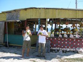 coconuts2006-02-03_01.jpg